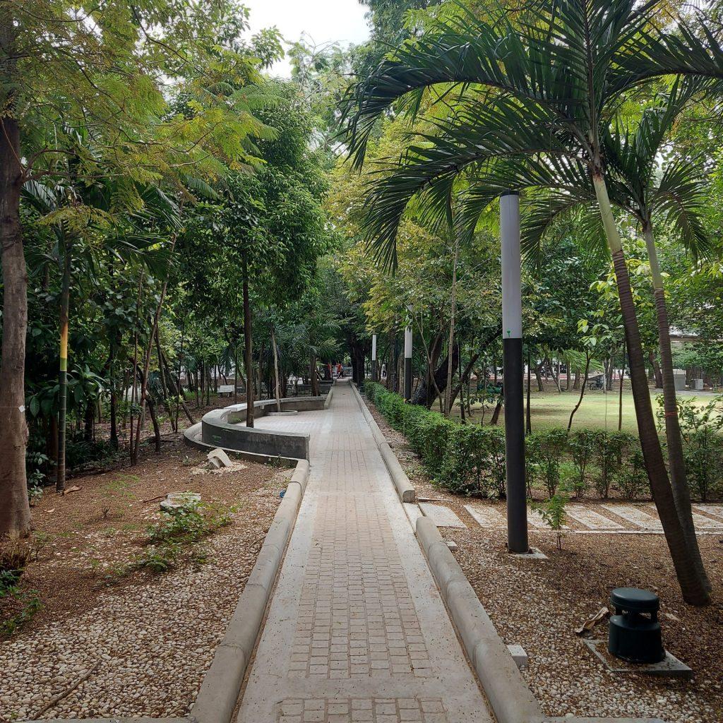 ped path3