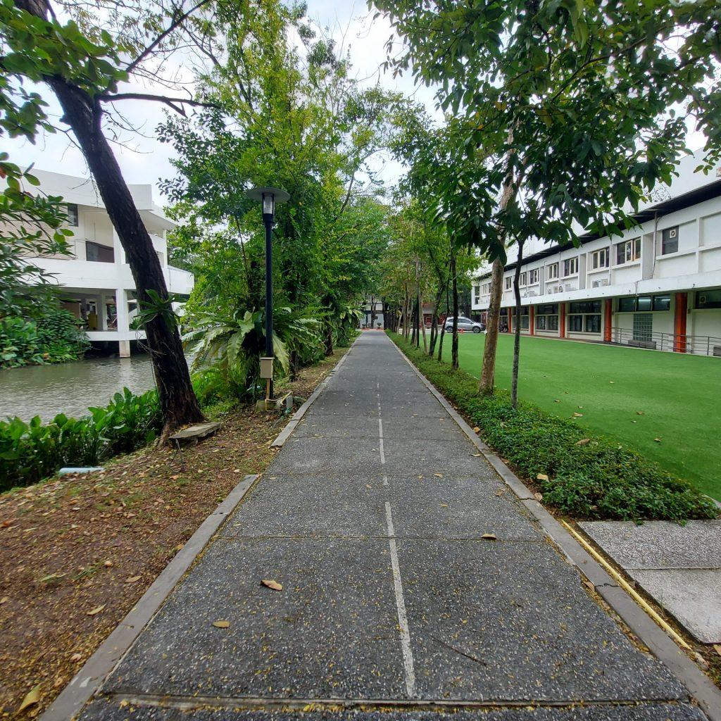 ped path4